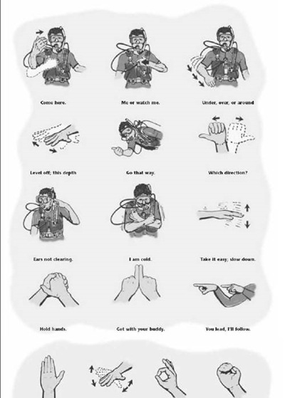 Scuba Hand Signals, sample
